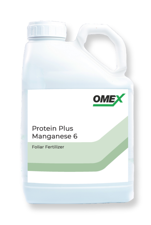 CELL POWER® Protein Plus™ Manganese 6%
